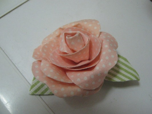 rosa r..jpg